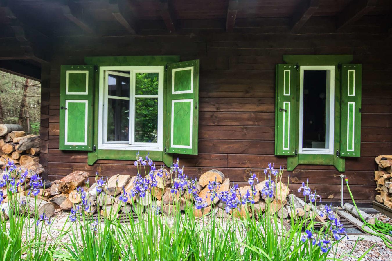 zielone okiennice w kolonii mazurskiej