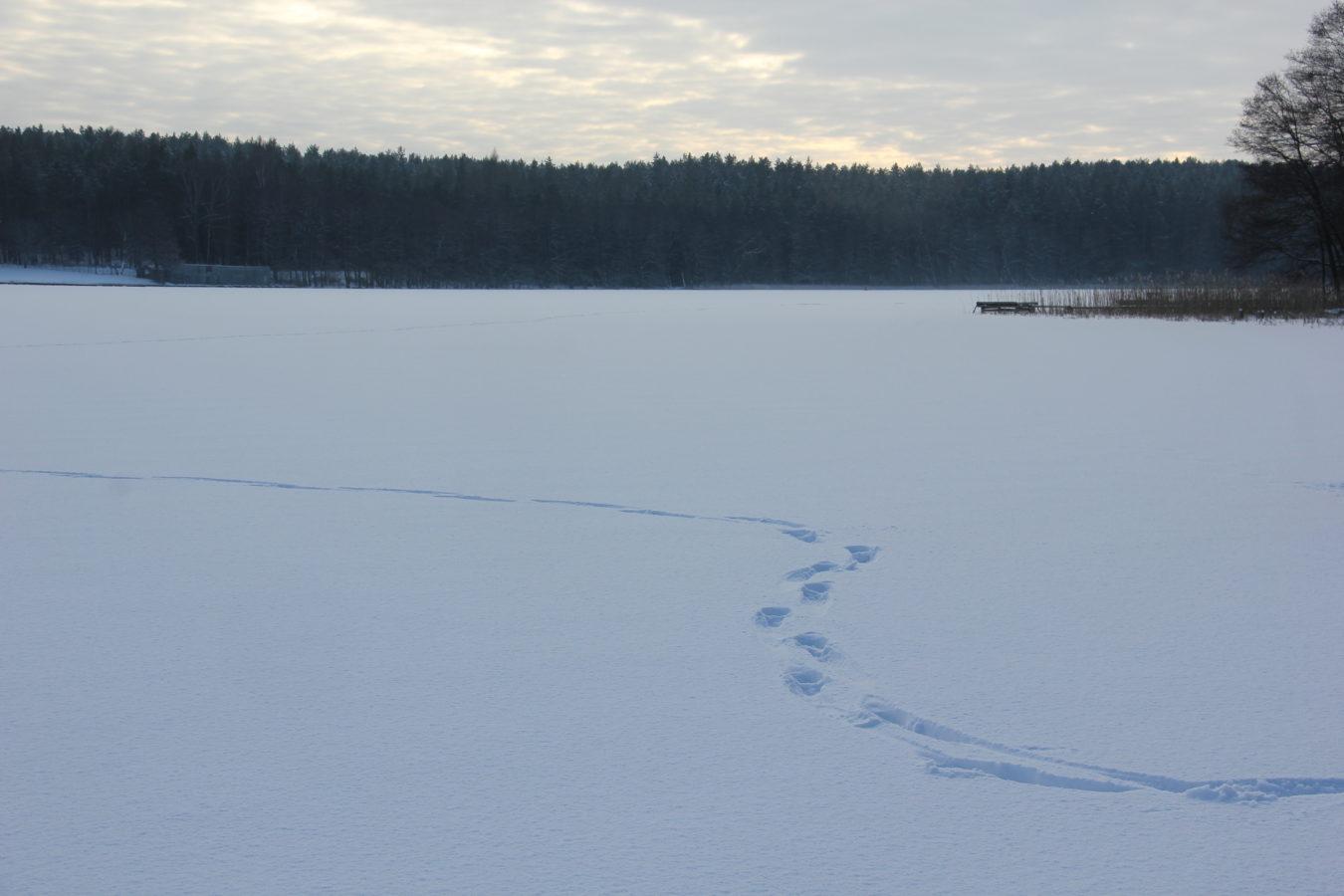 mazury mierki jezioro